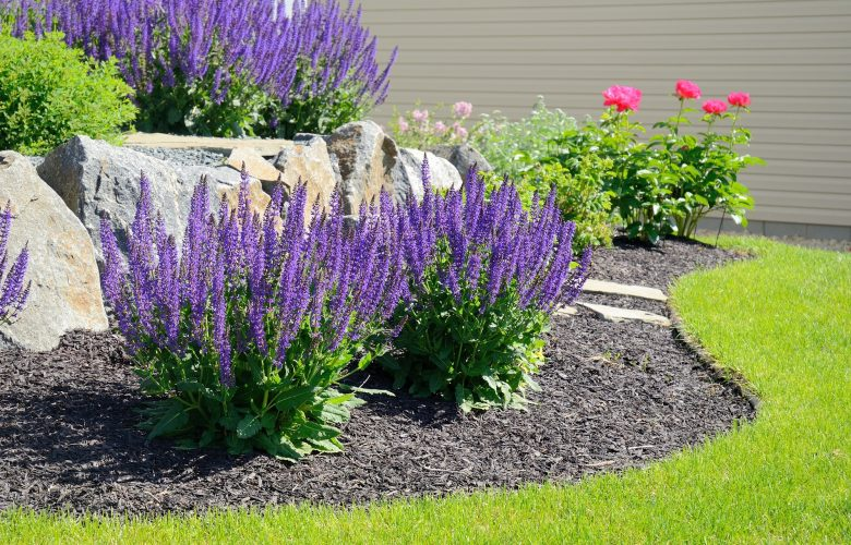 & 10 Simple Landscaping Ideas For Your Front Yard