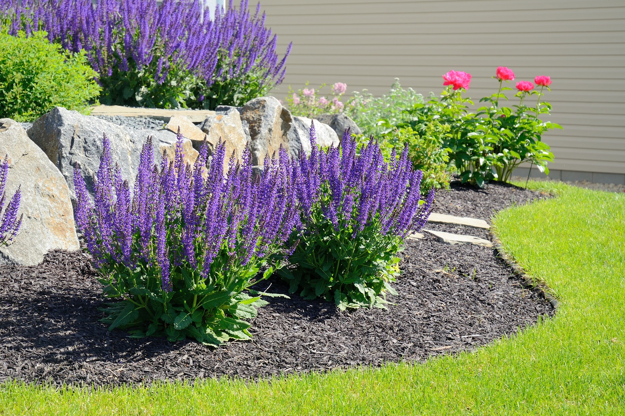 10 Simple Landscaping Ideas For Your Front Yard
