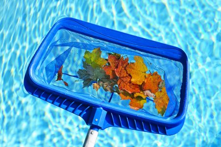 The Ultimate Homeowner's Guide to Proper Pool Cleaning